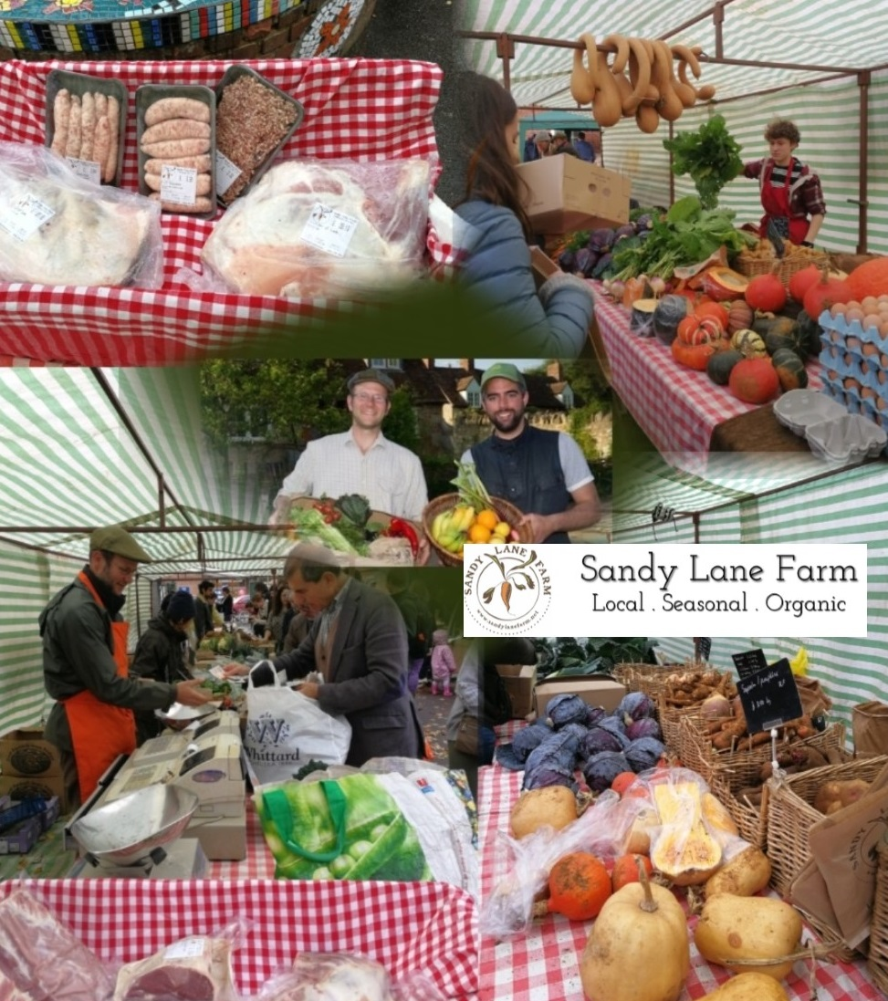 Sandy Lane Farm Collage 2 with logo